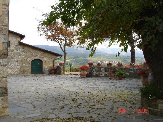 Fattoria Viticcio: Courtyard