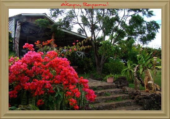 Hostal Cabanas Akapu: the main entrance at cabanas akapu
