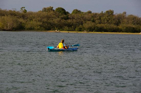 Noosa Harbour Resort: kayaking across the river