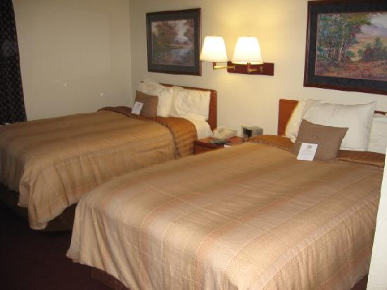 Candlewood Suites Newport News: Beds