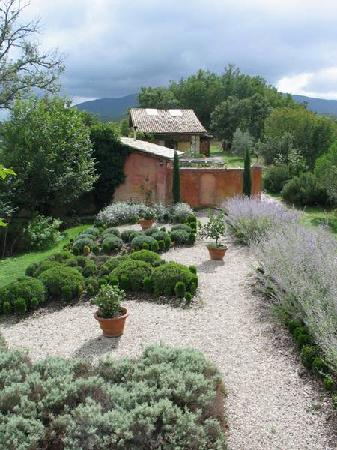 Casa Rosa : The Garden