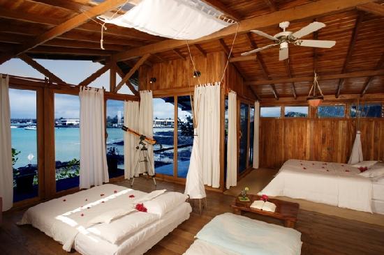 Red Mangrove Ecoluxury Hotel : Suite Mayor