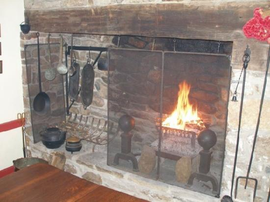 Daybreak Farm Bed and Breakfast: The cozy fire