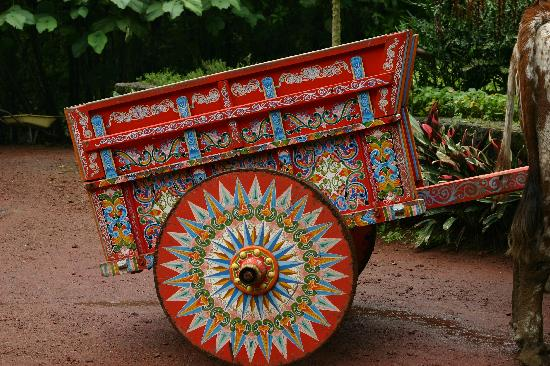 Peace Lodge: Costa Rican Ox Cart