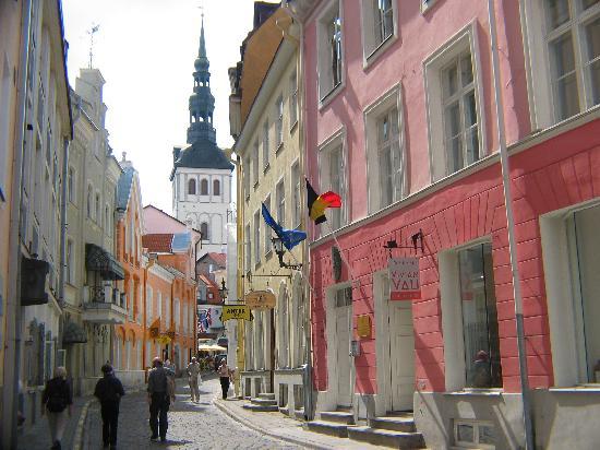 old town tallinn estonia street picture of tallinn old. Black Bedroom Furniture Sets. Home Design Ideas