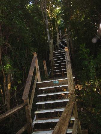 Harmony Studios: The Stairs!!!!!!!!!!!