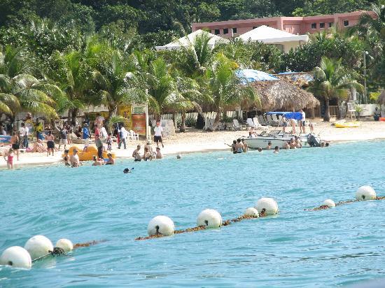 Bananarama Beach and Dive Resort: More West Bay beach