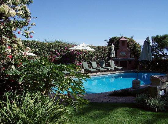 Villa del Angel Bed and Breakfast : Poolside