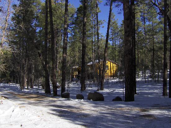 Foto de Whispering Pines Resort