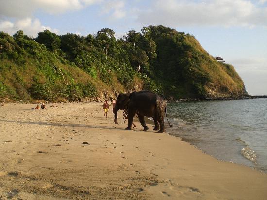 Lanta Marine Park View Resort: les voisins de l'hotel