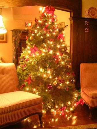 Oak Bay Guest House: Decorated tree in main room downstairs
