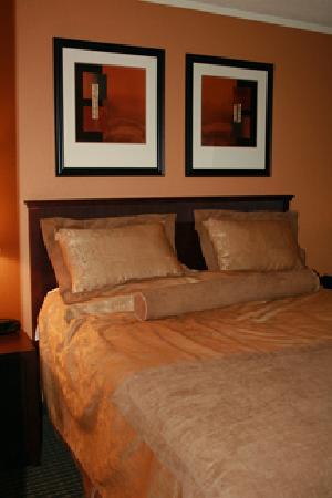 Fairfield Inn & Suites Cincinnati North / Sharonville: Bed