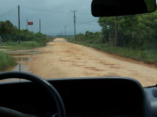 Hamanasi Adventure and Dive Resort: Typical Road Conditions
