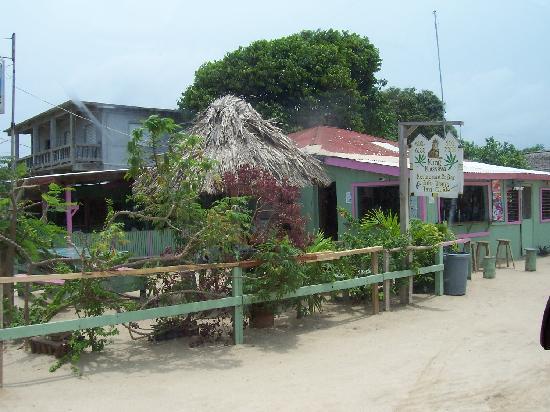 Hamanasi Adventure and Dive Resort: King Kassava Bar