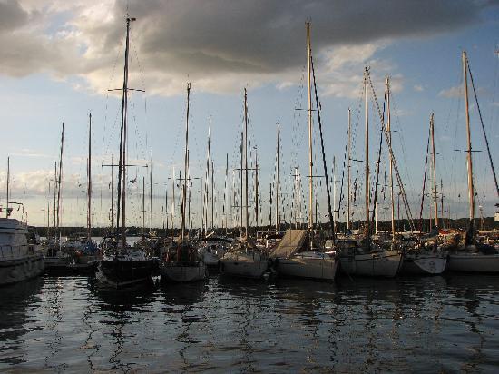 Pula, Kroasia: marina