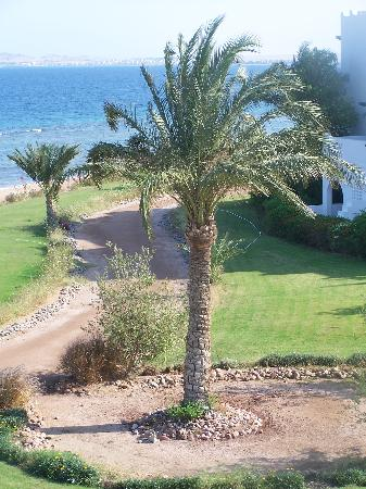 Mercure Hurghada Hotel: Vue de la Chambre
