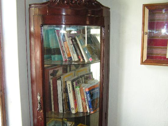 Casa Kanela: Small library