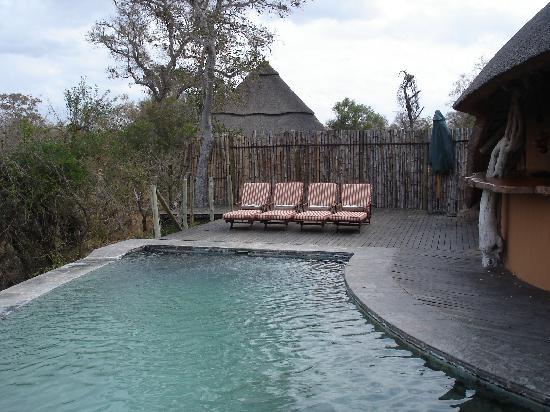 Royal Legend Safari Lodge & Spa: piscine