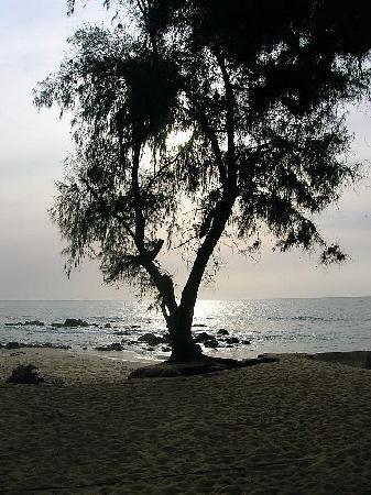Coralia Club Le Baobab : vue du bungalow
