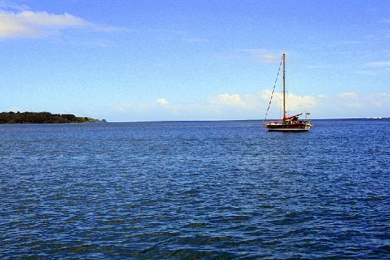 Bocas Inn: View from Hotel