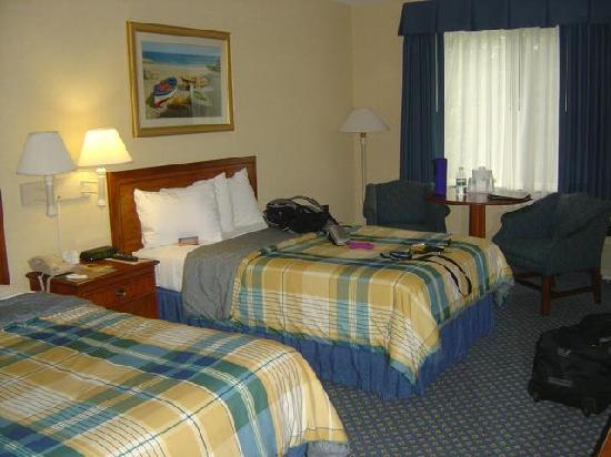 Holiday Inn Cape Cod-Falmouth: Zimmeransicht
