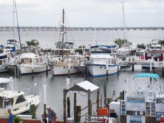 Fishermen's Village Resort : Marina