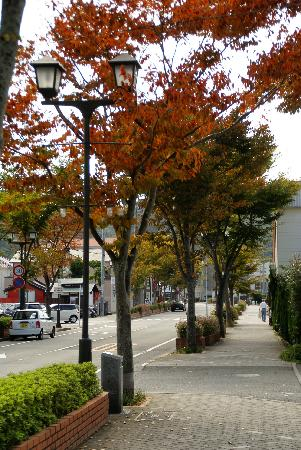 Shimoda Yamatokan: Shimoda in autumn end Oct