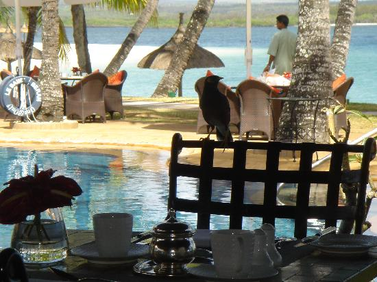 One&Only Le Saint Geran - TEMPORARILY CLOSED: breakfast