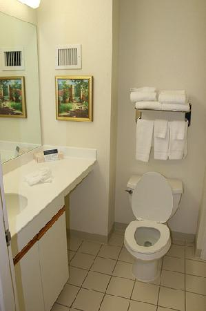 Extended Stay America - St. Louis - Westport - Central: bathroom