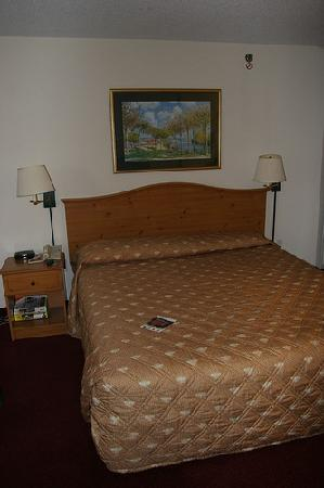 Extended Stay America - St. Louis - Westport - Central: bed