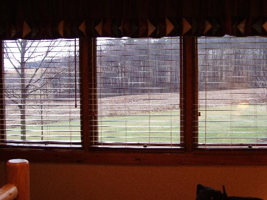 Dockside Bed & Breakfast: Beautiful view out of bedroom in Elk Suite