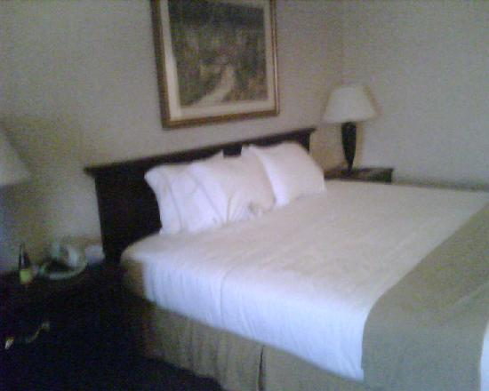 Holiday Inn Express Bourbonnais (Kankakee / Bradley): Nice comfortable bed