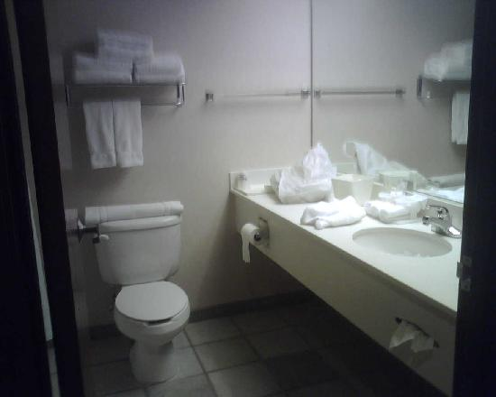 Holiday Inn Express Bourbonnais (Kankakee / Bradley): bathroom