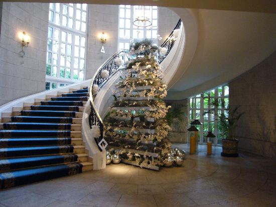 Four Seasons Mexico City: orchid christmas tree (not live orchids)
