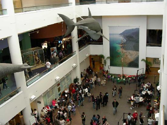 San Diego Museum Of Natural History Tickets