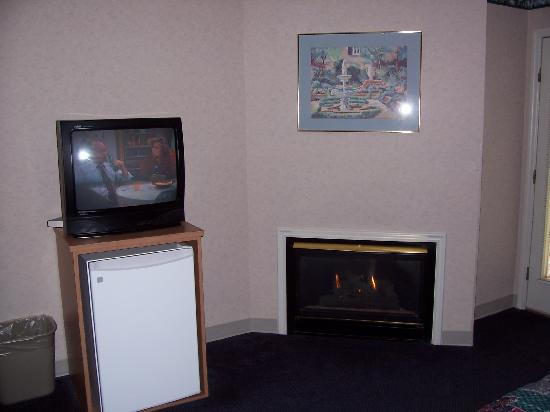 Twin Mountain Inn & Suites : Fireplace