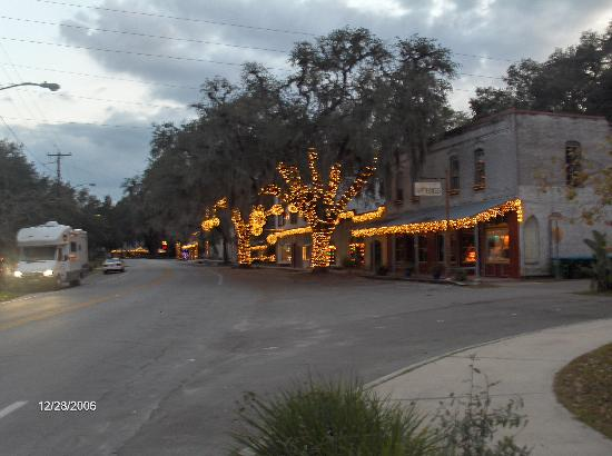 Paynes Prairie State Preserve: Historic Micanopy lights at Christmas time
