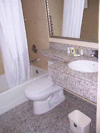 Comfort Inn Times Square South : bathroom