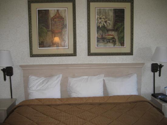 Comfort Inn University: Room Pic 2