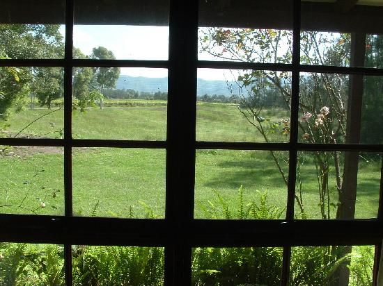 Hunter Habit Cottages : View from the main bedroom