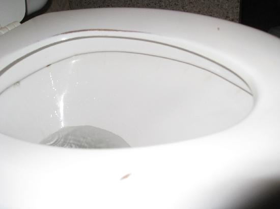 Red Lion Hotel Redding: Toilet Seat Scraped & Gouged