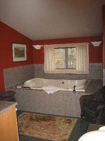 Sherwood Forest Bed and Breakfast: The bathroom... it was huge!