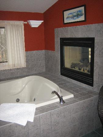 Sherwood Forest Bed and Breakfast: A closer look at the two way fireplace and huge two person tub.