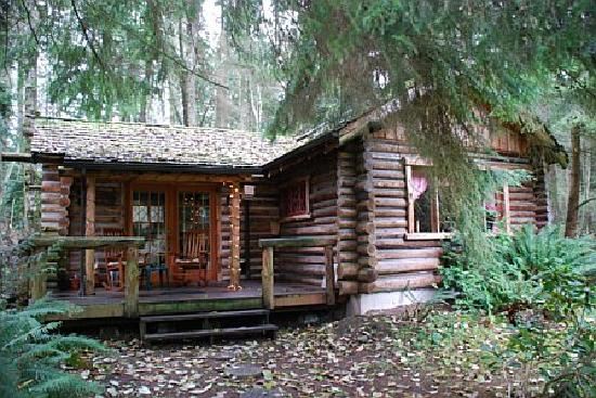 Guest House Log Cottages : Another view of the log cabin - so cute!