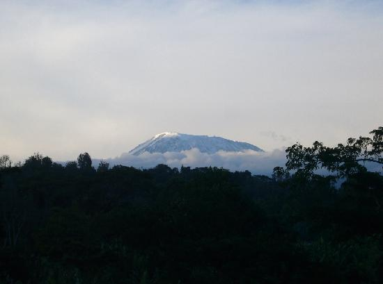 Kilimanjaro Mountain Resort : Mt. Kili Sunset view
