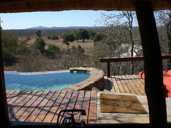 Garonga Safari Camp: Suite - Vista dall'interno della camera sulla piscina privata e sulla savana
