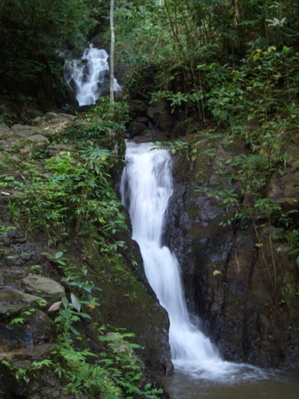 the short jungle hike to the waterfalls of Khao Phra Taew in Phuket is a nice break from the bea