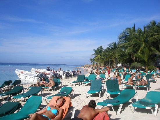 Viva Wyndham Dominicus Beach An All Inclusive Resort La Spiaggia Del