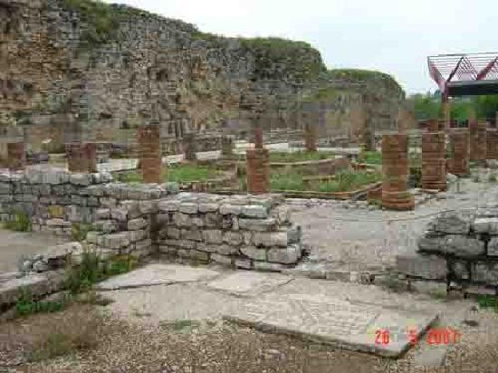 Museu Monográfico de Conímbriga: Conimbriga Roman Ruins