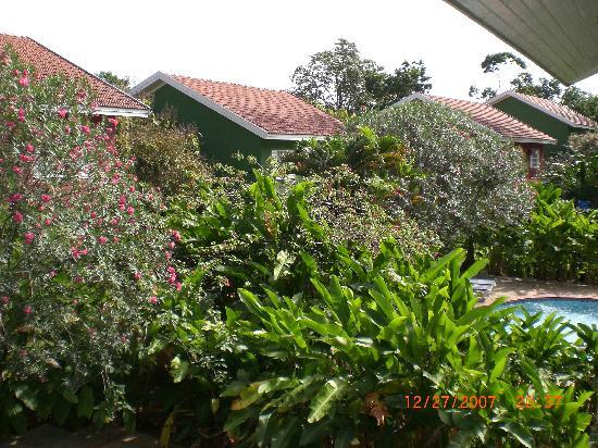 Sandals Ochi Beach Resort: Plush greenery surroundings